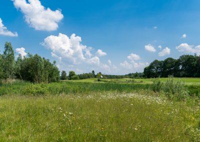 bleijenbeek-1267