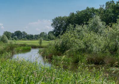 bleijenbeek-4